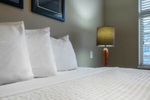 Executive extended stay fully furnsihed and serviced apartments