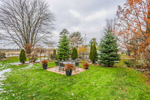 Solid brick bungalow on 2.36 acres within the City limits London Ontario image 6