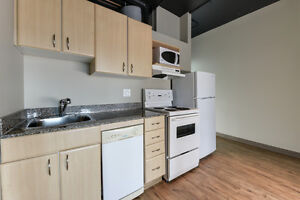 Private, Safe, Central 1 Bed Condo - Perfect for Students Edmonton Edmonton Area image 9