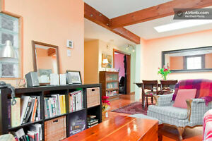 Cozy 6.5 apt to share with nurse, near Parc La Fontaine