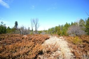 Estate, Equestrian or Hobby Farm 10 Acre Lots!