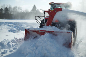 Twins Snow Removal