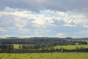 LAND, WATER & VIEWS - PONOKA COUNTY
