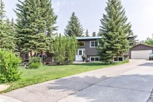 Phenomenal home in Cochrane loaded with Renovations and Space!