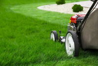 Lawn Mowing services