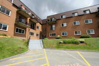 Great 2 Bedroom Condo in Downtown Dartmouth! Super Opportunity!