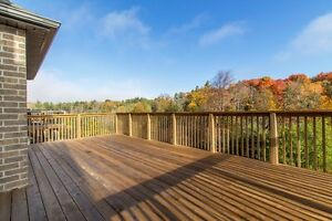 !!!!!!!Beautiful View! MUST SEE!!!!!!! Kitchener / Waterloo Kitchener Area image 10