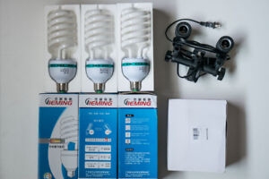 New 125W 5500K CFL light bulbs and light stand mount for photo
