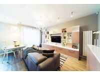 Immaculate 1 bed apartment - Chancery Lane
