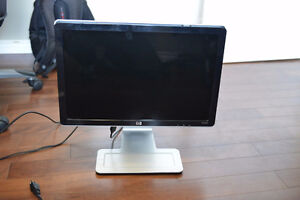 HP 22in monitor