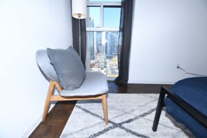 Furnished, large 1 BR apartement, in the heart of downtown