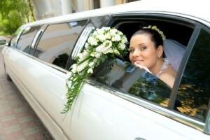 stretch limousine service limo wedding package rental