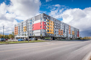 Solstice 1 (Summer Sublet - Guelph)