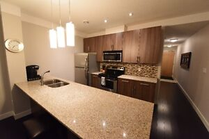 BEAUTIFUL fully furnished one bedroom in RED condos UPTOWN