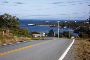 Land for Sale in Terence bay