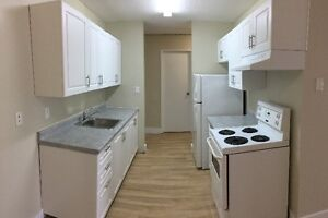 Comfortable Spacious 2 bedroom -Madison Apartments