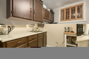 FREE Kitchen Cabinets, Countertop & Sink