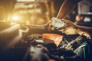 Oil change savings, each and every day!
