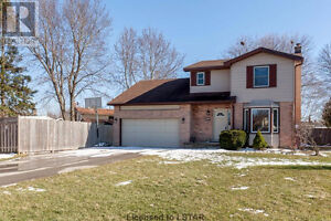 3 Bed 1.5 Bath Perfect for Single Family or Young Professionals