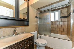 Just renovated 2 bedroom Raised legal basement suite in North Ed