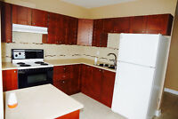 For Rent Bachelor Apartment in Bradford 1 room grand kitchen