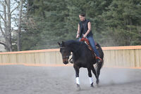 INFINITY EQUESTRIAN - Riding Lessons for youth and adults!