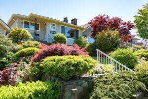 Beautiful Upper Level 3 Bedroom and Rec room in North Burnaby