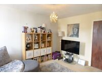 Stunning One Bed Flat Available in October