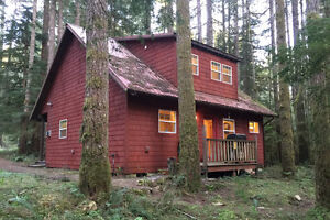 Mt. Baker Lodging - Cabin #12 - FIREPLACE, WIFI, SLEEPS-4!