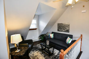 Amazing Furnished Loft - High End Finishes-Jan.15th/Feb1st