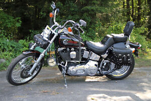 *1993 HARLEY DAVIDSON SOFTAIL FXSTC, 2ND OWNER, TONS OF CHROME *