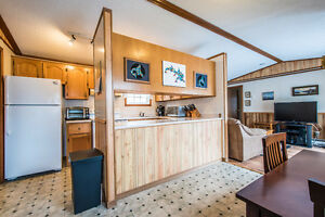 Comfortable open concept mobile home