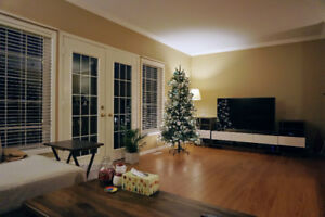 End Unit Townhouse W/ Finished Walk Out Basement In Laurelwood