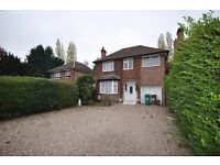 Beautiful Refurbished 4 Bedroom Family House in Wollaton, 2 Living Rooms, Large Gardens, Garage