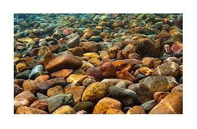 Penn Plax River Rocks 3D Depth Aquarium Background 20 Gallon LB3