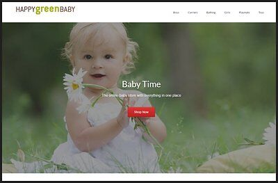 Baby Products Website Earn 761.00 A Salefree Domainfree Hostingfree Traffic
