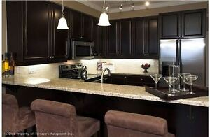 Luxury One Bedroom Condo for Rent Near the Market and Downtown