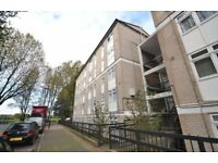 Spacious 3 bedroom flat minutes away from Island Gardens DLR- Glengarnock house. Docklands