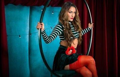 Nikki Bella Wwe Dark Carnival Photo 4X6 8X10  Select Size   001