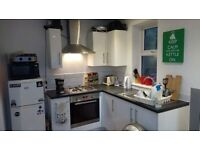 Two single rooms available - Near Kemptown