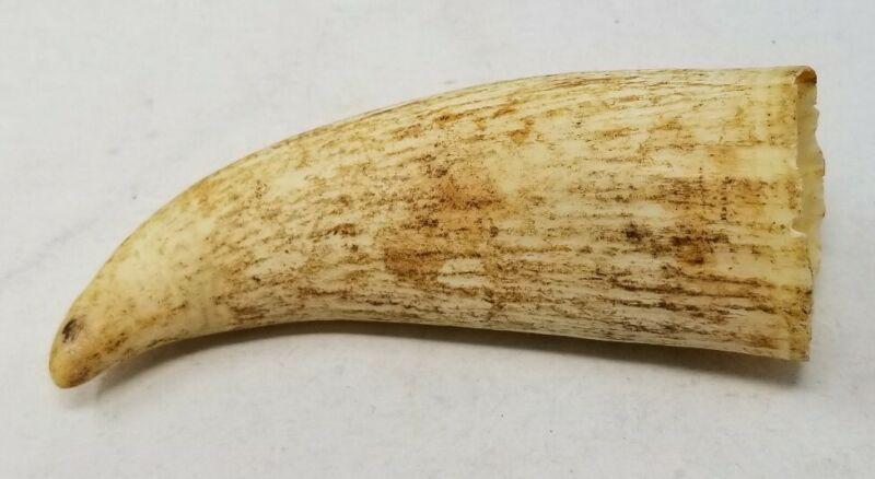 replica sperm whale tooth, made of plastic 94.6g