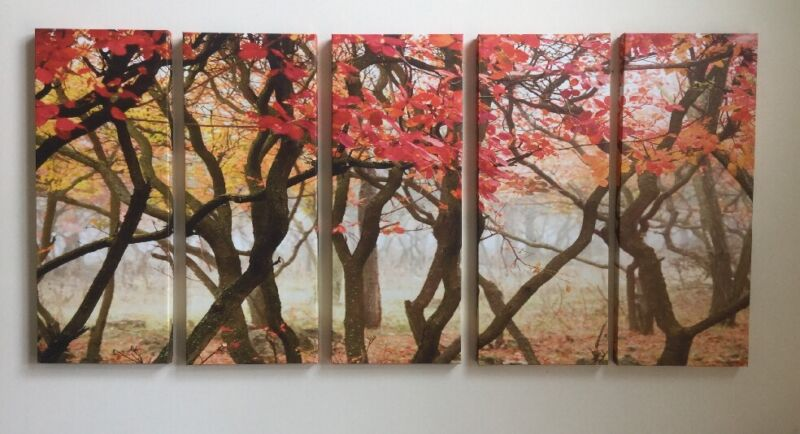 """WOODS FOREST BRANCH LEAVES NATURE CANVAS ART 68""""X 32"""" ORANGE RED READY TO HANG"""