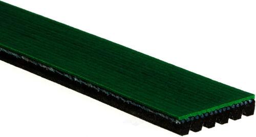 ACDelco K060559HD Specialty Heavy Duty V-Ribbed Serpentine Belt