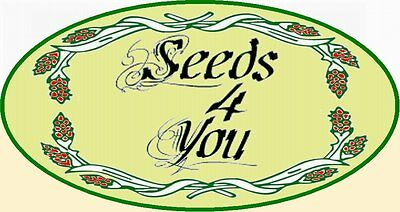 seeds-for-you