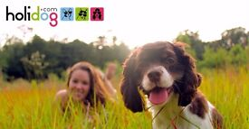 Part-time Dog and Cat Sitters needed in Liverpool!