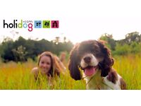 Part-time Dog and Cat Sitters needed in London