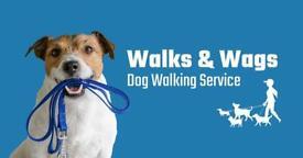 Dog walking service based in Uddingston.