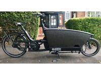 Urban Arrow Family electric cargo bike (Performance Line CX - top of the range)