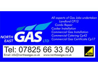 Plumber/Cooker Install/Boiler Repair/ Water/Gas/Electric/Heater/Pipe Work/CP12/Landolord/Commercial