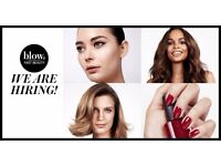 Earn £100 for referring a Hair Stylist, Makeup Artist or Nail Technician to blow LTD